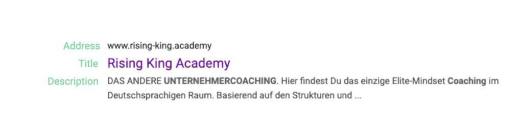 Google's Search Result for Rising King Academy