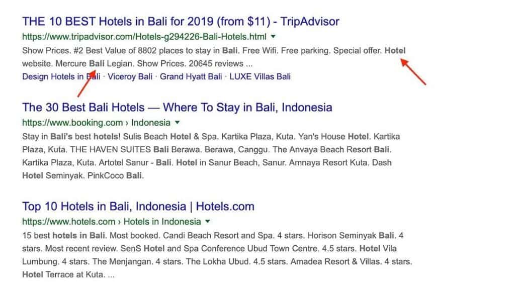 "Google's search results page for ""Hotels in Bali"""